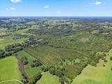1035C Hinterland Way Bangalow, NSW 2479