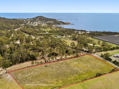 50 Harveys Farm Road Bicheno, TAS 7215