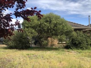 5 Apalie Drive Modbury , SA, 5092