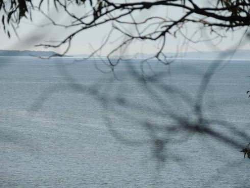 75 Perulpa Drive Lamb Island, QLD 4184