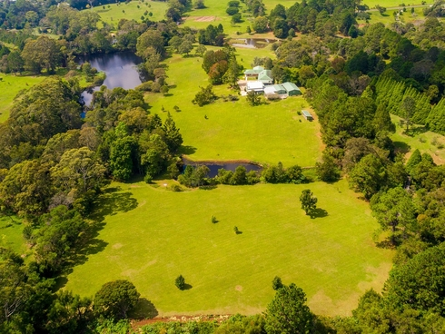 95 Velvet Downs Road Springbrook, QLD 4213