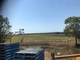 60 Eucalypt Drive Swan Bay, NSW 2471