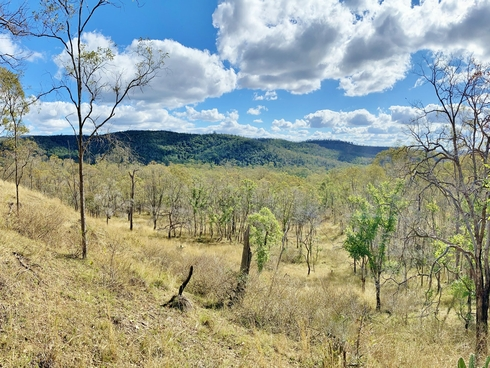 Lot 53 Tim Shea Creek Road Wengenville, QLD 4615