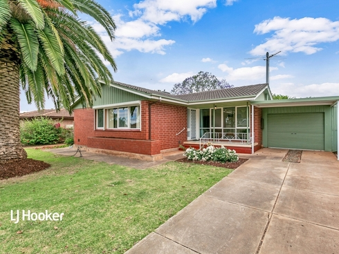 11 Walditch Street Elizabeth Downs, SA 5113
