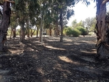 Lot 34 Wandoo Rise Gabbadah, WA 6041