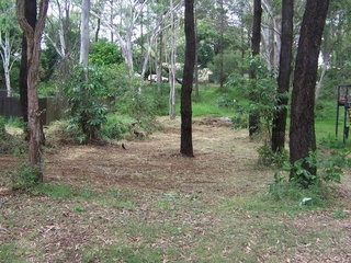 12 Nectar Street Lamb Island , QLD, 4184