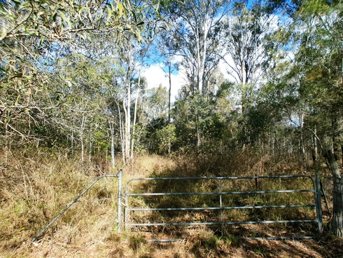 248 Backwater Road Greenbank, QLD 4124