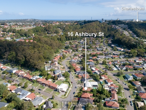 16 Ashbury Street Adamstown Heights, NSW 2289