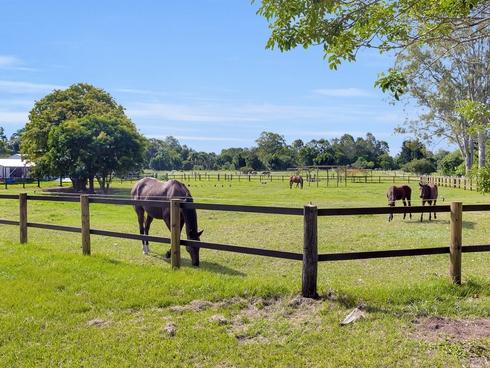12 Gunsynd Drive Mudgeeraba, QLD 4213