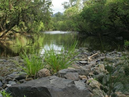 Wingham, NSW 2429